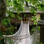 บ้านต้นไม้ ในบรรยากาศร่มรื่นเป็นธรรมชาติ เติมเต็มความฝันของใครหลายคน