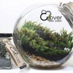 พาทำ DIY สวนในขวดโหล ไอเดียสร้างพื้นที่สีเขียวเล็กๆ เติมเต็มธรรมชาติให้กับบ้าน