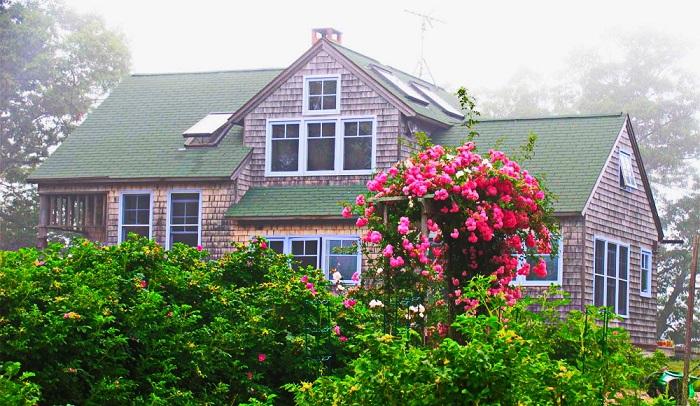 cedar-peninsula-cottage-1