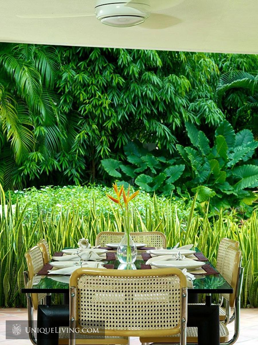 contemporary tropical luxury house with garden green (3)