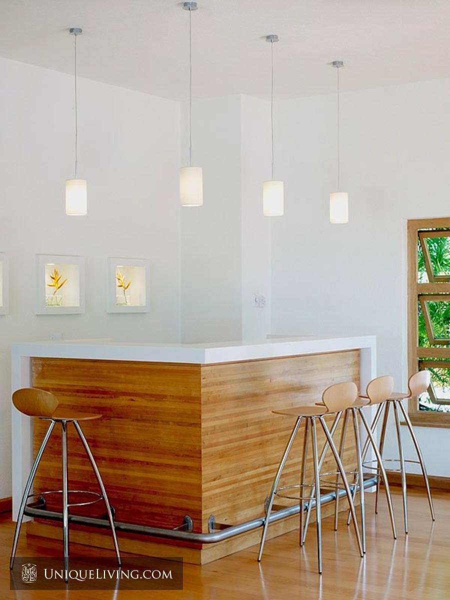 contemporary tropical luxury house with garden green (5)