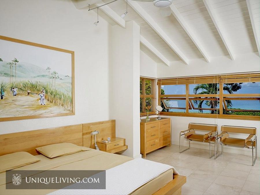contemporary tropical luxury house with garden green (6)