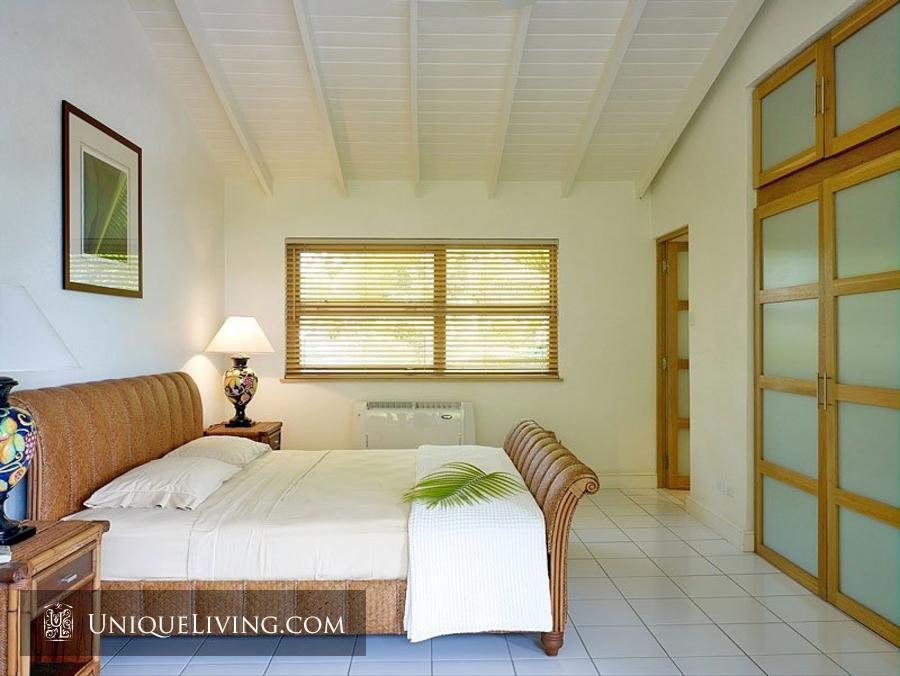 contemporary tropical luxury house with garden green (7)