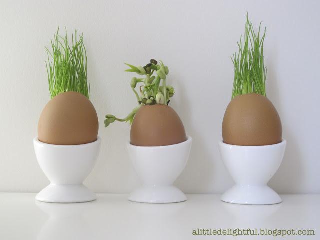 eggplantings_eggcups