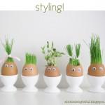 อยู่ว่างๆ ลองมาทำไอเดีย DIY ตกแต่งบ้านให้น่ารักเป็นธรรมชาติ จากเปลือกไข่เหลือทิ้งกัน