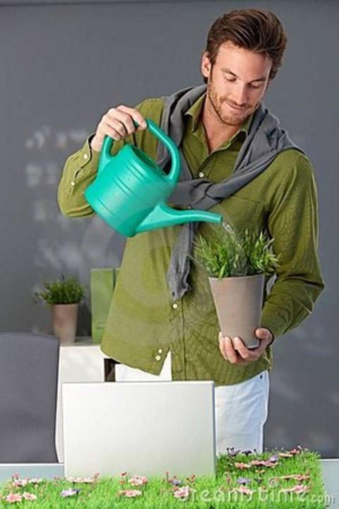 green-idea4
