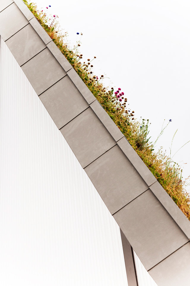 green roof eco house idea (2)