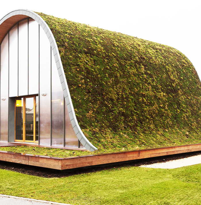 green roof eco house idea (9)