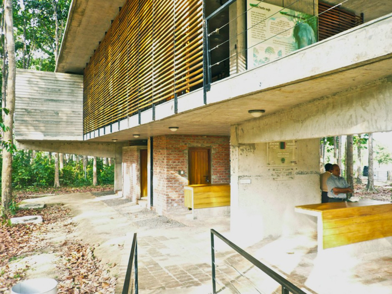modern contemporary eco house in forest (5)