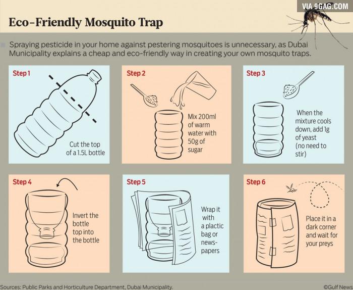 mosquito trap (2)