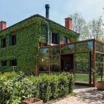 บ้านแบบอินดัสเทรียล ปกคลุมภายนอกด้วยพื้นที่สีเขียวทั้งหลัง แต่งภายในร่วมสมัย