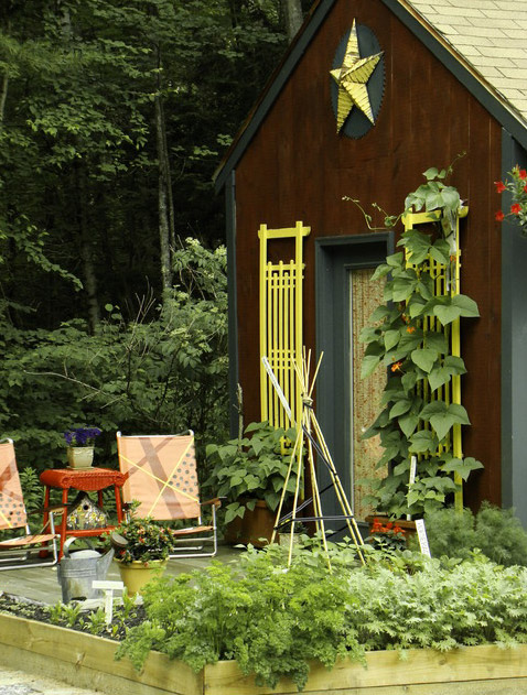 shed-house-idea-small-mini-with-garden3