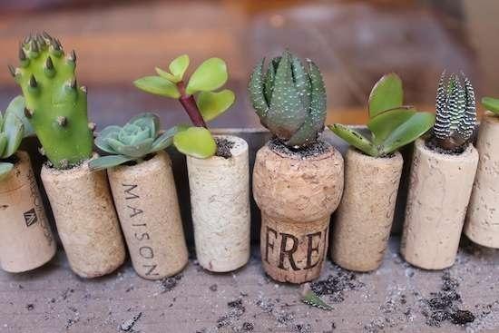 diy wine cork into fridge magnet and plant (3)