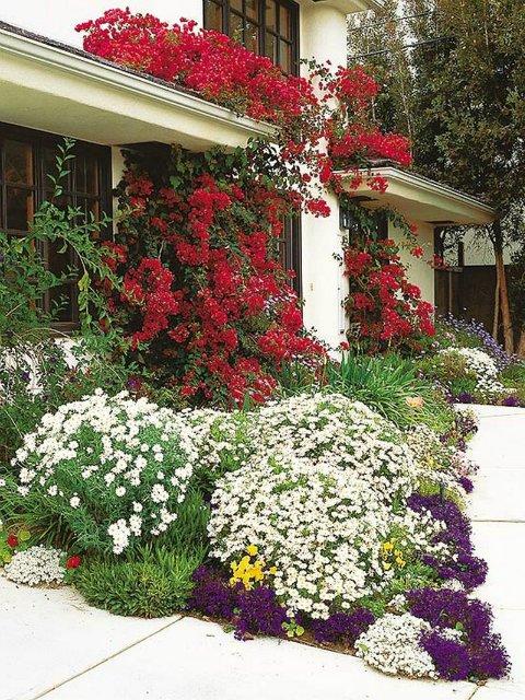 idea-for-frontyard-garden (19)