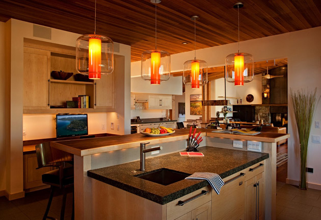 modern rustic wooden house with elegant interior design in usa (7)
