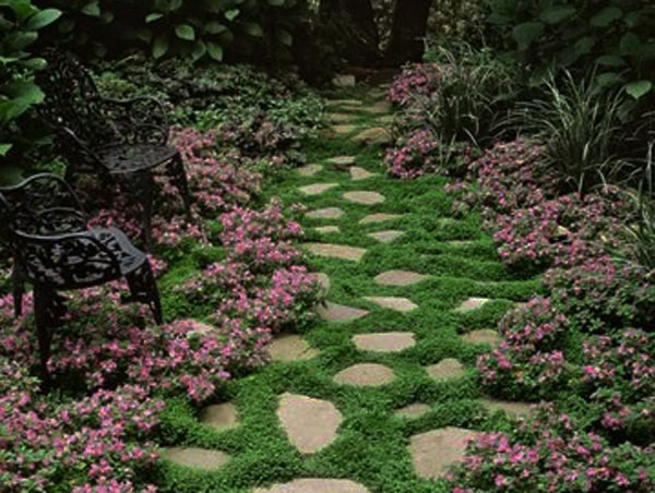 walk pathway to make your home and garden looks beautiful (20)