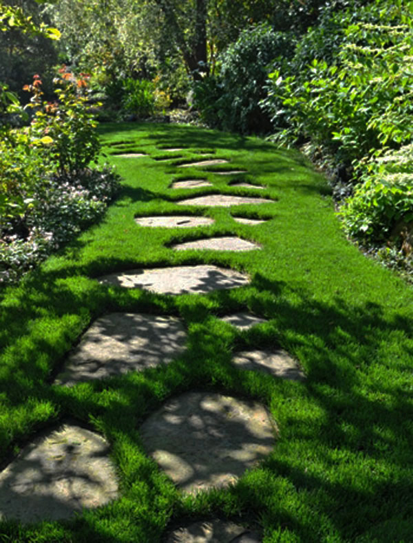 walk pathway to make your home and garden looks beautiful (34)