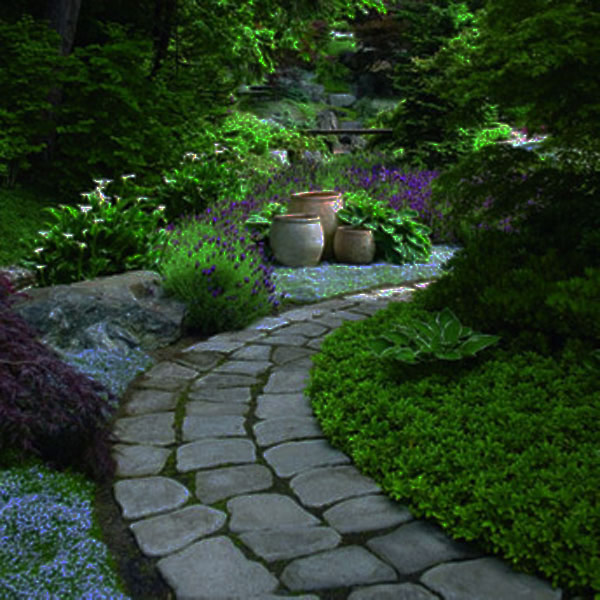 walk pathway to make your home and garden looks beautiful (8)