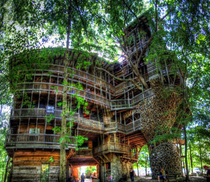 25-most-intense-tree-house-in-the-world (10)
