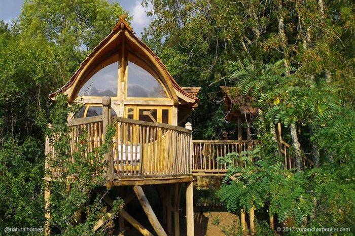 25-most-intense-tree-house-in-the-world (12)