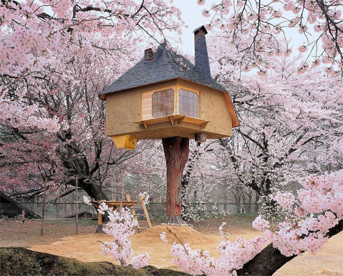 25-most-intense-tree-house-in-the-world (13)