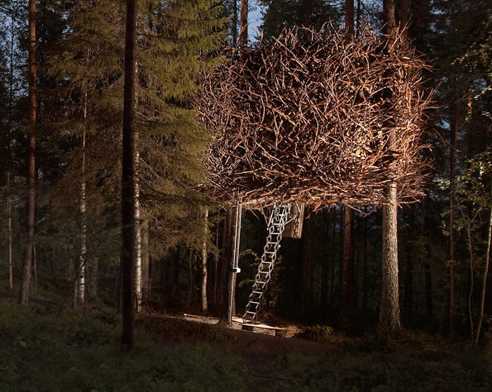 25-most-intense-tree-house-in-the-world (16)