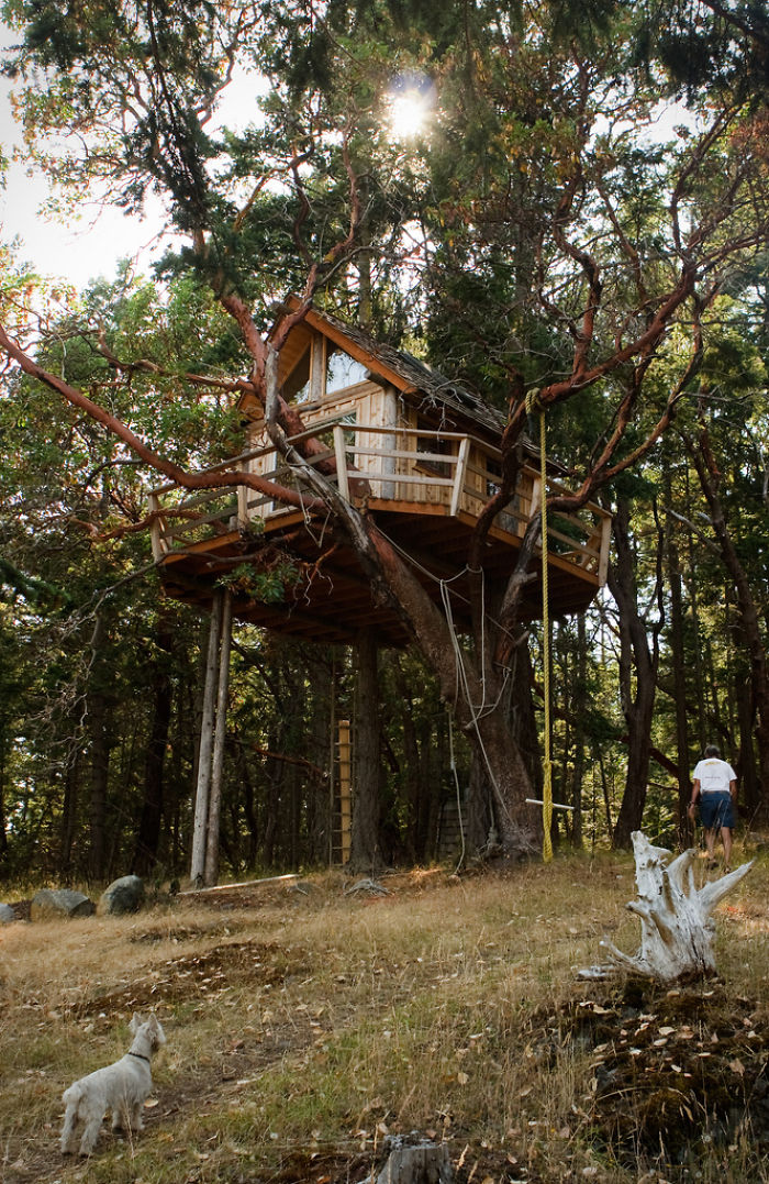 25-most-intense-tree-house-in-the-world (17)