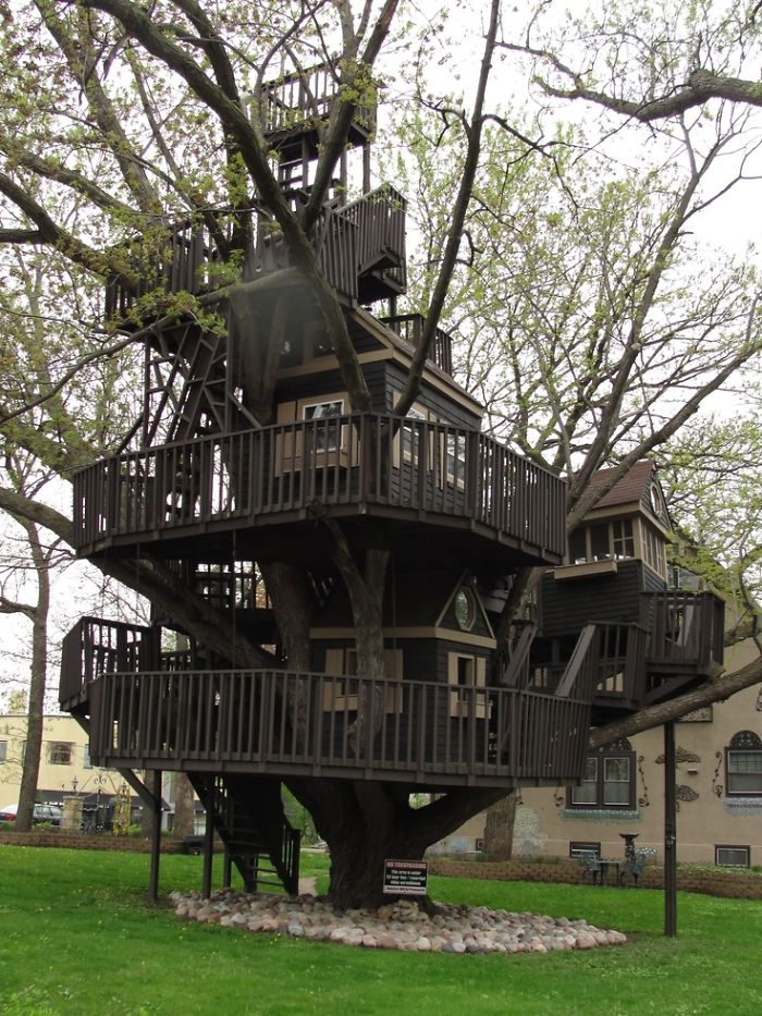 25-most-intense-tree-house-in-the-world (20)