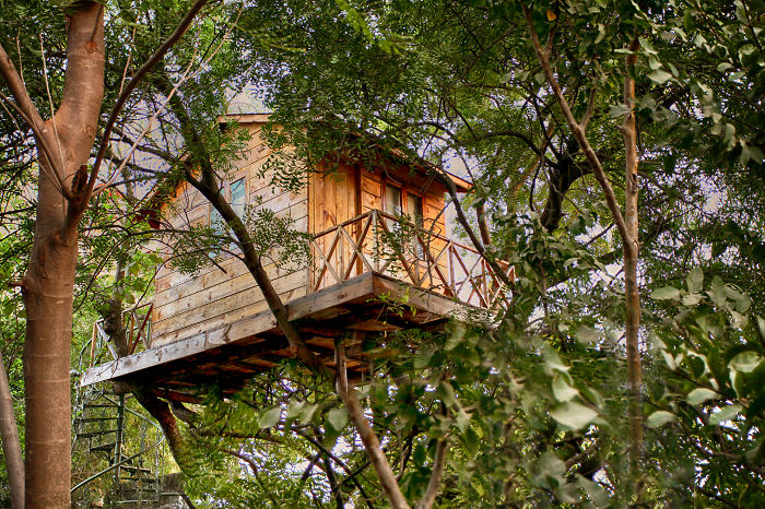 25-most-intense-tree-house-in-the-world (23)