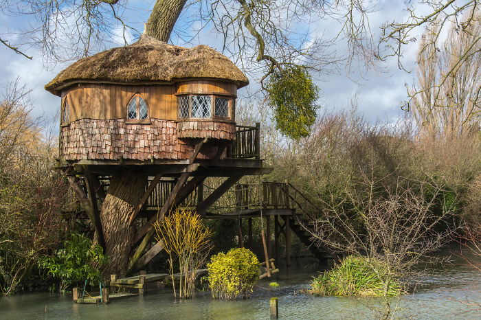 25-most-intense-tree-house-in-the-world (3)