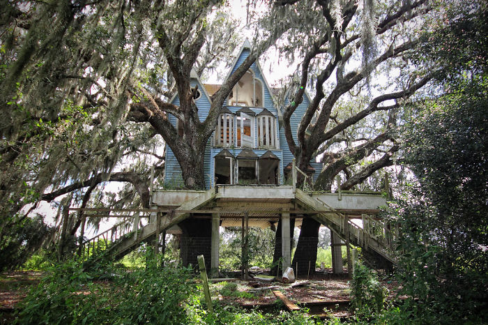 25-most-intense-tree-house-in-the-world (4)