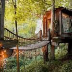 25 บ้านต้นไม้ที่เจ๋งที่สุดในโลก ที่คุณอาจจะไม่เคยเห็นมาก่อน!!