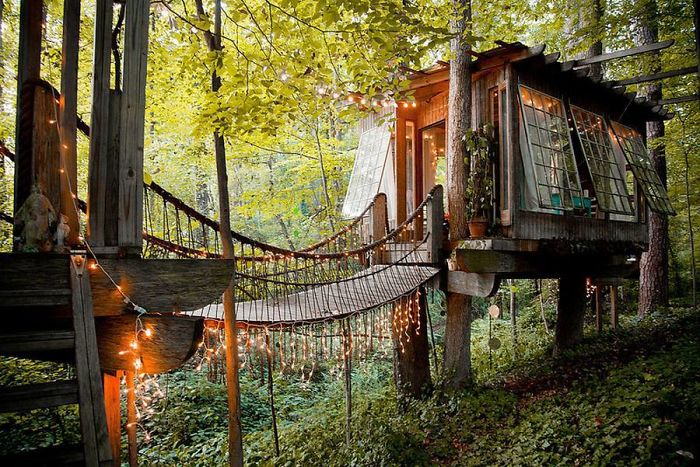 25-most-intense-tree-house-in-the-world (5)