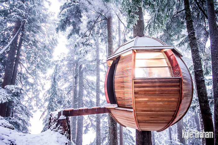 25-most-intense-tree-house-in-the-world (6)