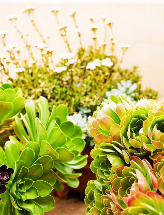 32-ideas-for-garden-decoration (15)