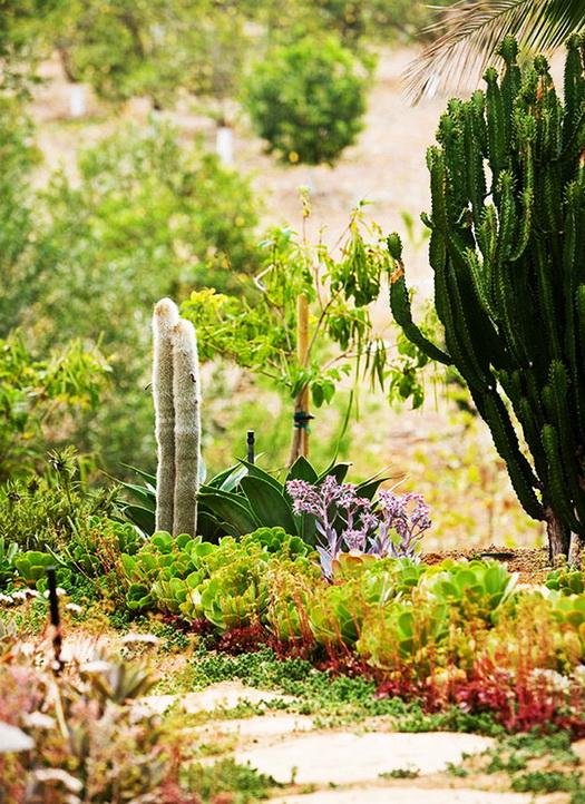 32-ideas-for-garden-decoration (22)