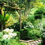 เนรมิตสวนสวยด้วย 32 ไอเดียตกแต่งสวน เพิ่มความสดชื่นรื่นรมย์ให้กับบ้านของคุณ
