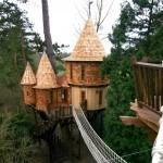 บ้านต้นไม้ในป่าใหญ่ สำหรับครอบครัว ความงดงามดั่งนิยายแฟนตาซี