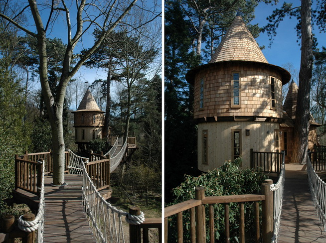 fantasy-family-tree-house (4)