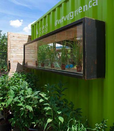 green cozy welcoming hut (8)