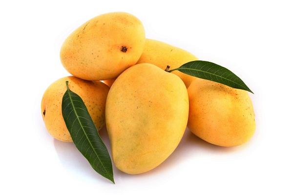 mango_47852692