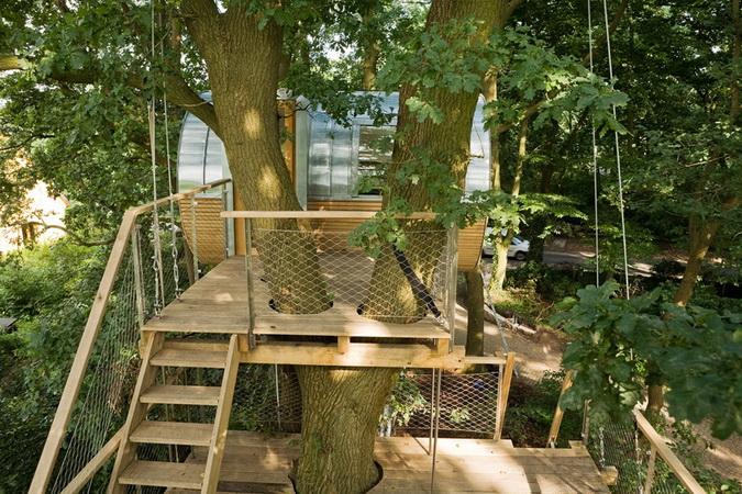 modern egg shape tree house (4)