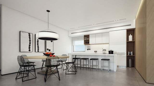 modern hiclass white black house (1)_resize