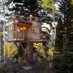 บ้านต้นไม้กลางป่า ทรงกล่องสี่เหลี่ยม พร้อมพื้นที่ใช้สอยบริเวณดาดฟ้า
