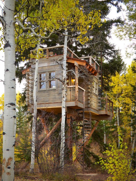 modern-tree-house-with-roof-deck (2)