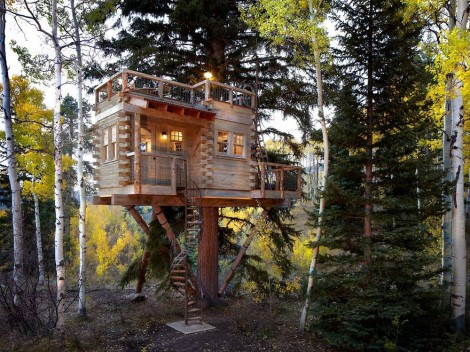 modern-tree-house-with-roof-deck (6)