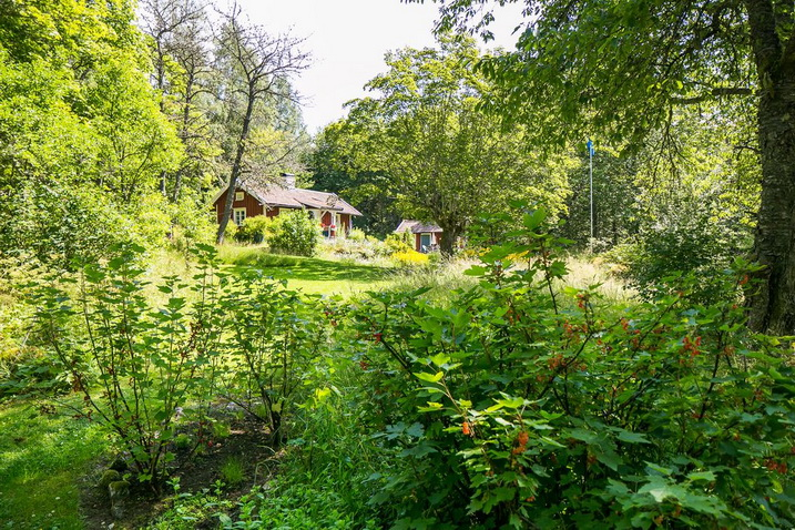 red-wooden-cottage-in-forest (23)