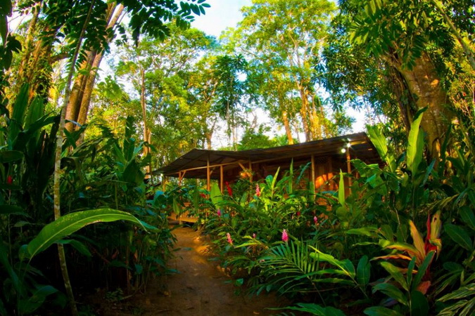 wooden resort tropical house (16)