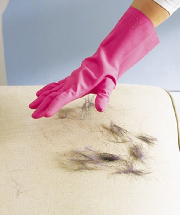 Rubber-Glove-as-Pet-Hair-Remover