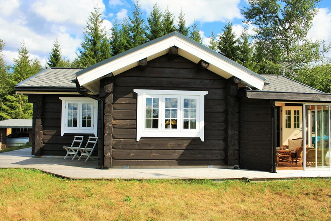 black-cabin-log-house (8)